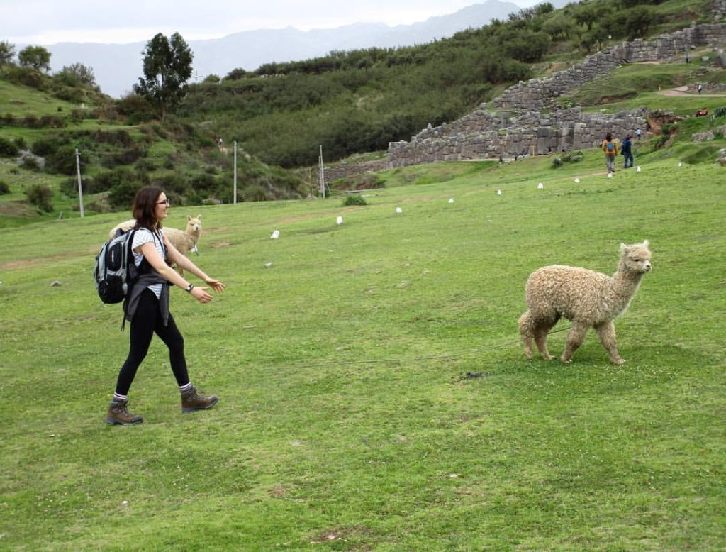 back-packer with a llama
