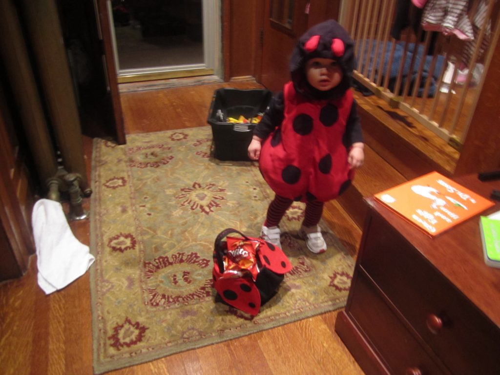 little girl in lady bug costume