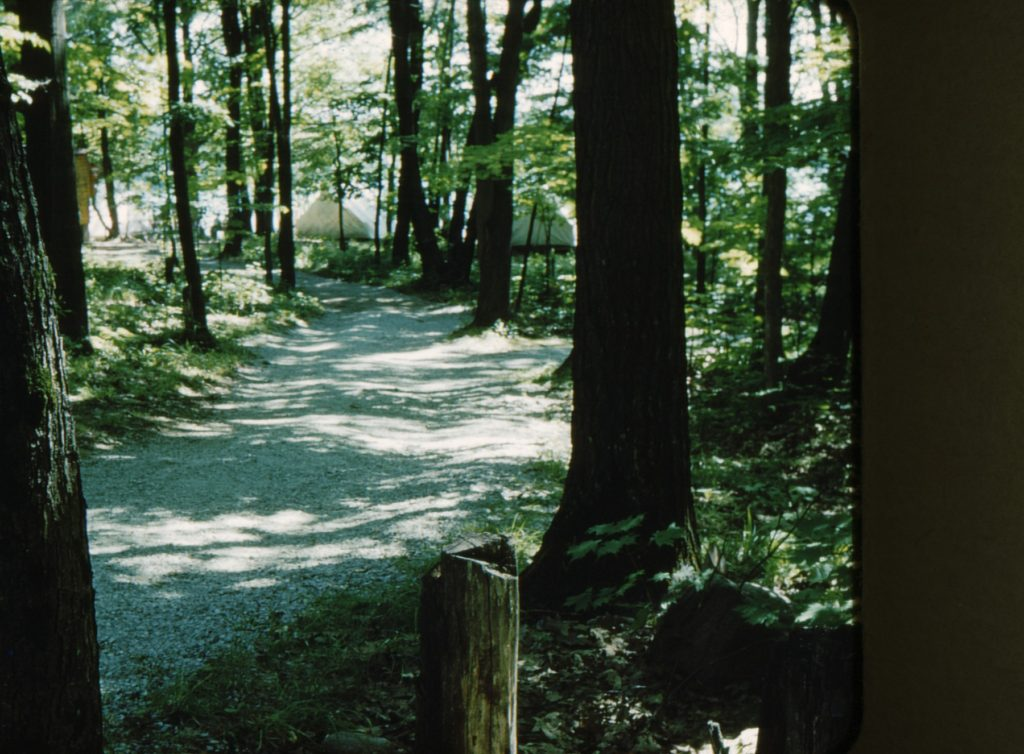 Path to the senior tents